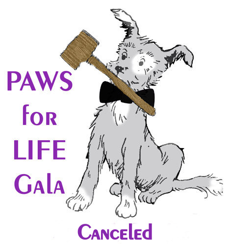 Paws For Life Auction